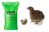 Комбікорм для перепілок у період яйцекладки 100% ™ D-МІКС (25кг)  Україна-Голандія