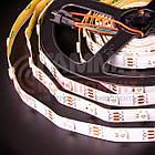 Адресная светодиодная лента AVT PROFESSIONAL SMD 5050 WS2812B (30 LED/m), IP20, 5B - бобины от 5 метров., фото 5