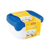 Набор емкостей для морозилки Curver Fresh&Go квадратные 3 х 0,8 л 08559