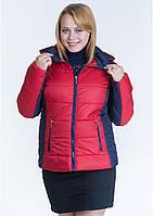 Куртка жіноча №15 (червоний/синій)