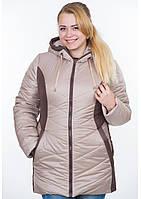Куртка женская №26 (бежевый/шоколад)