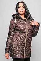 Куртка жіноча №12 (шоколад)