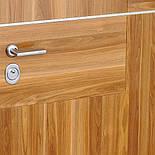 Двері вхідні STRAJ Квадро, фото 3
