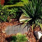 Агроткань Agreen 100, черная, ширина 1,6 м, в рулоне 50 м, фото 2