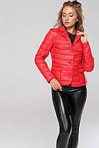 Женская короткая молодежная куртка Дикси р-ры 42,44,48, фото 2