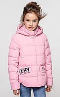 Демисезонная куртка для девочки Робби, фото 1