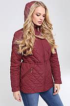 Женская демисезонная куртка больших размеров Мейси 62,64р., фото 3