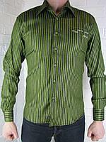 Рубашка мужская зеленая S-XL  LV-105