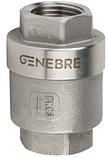 Клапан обратный подпружиненный  Genebre (Испания) тип 2416 12 DN100 PN63 ДУ100 РУ63, фото 2