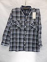 Мужская котоновая рубашка (длинный рукав) оптом со склада в Одессе, фото 1