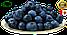 Черника сушеная (Канада) вес: 500 гр, фото 2