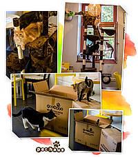 """Когтеточка """"Игровая площадка"""" коричневая Pethaus, 50x50x130 см, фото 2"""