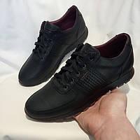 Мужские спортивные туфли Clubshoes