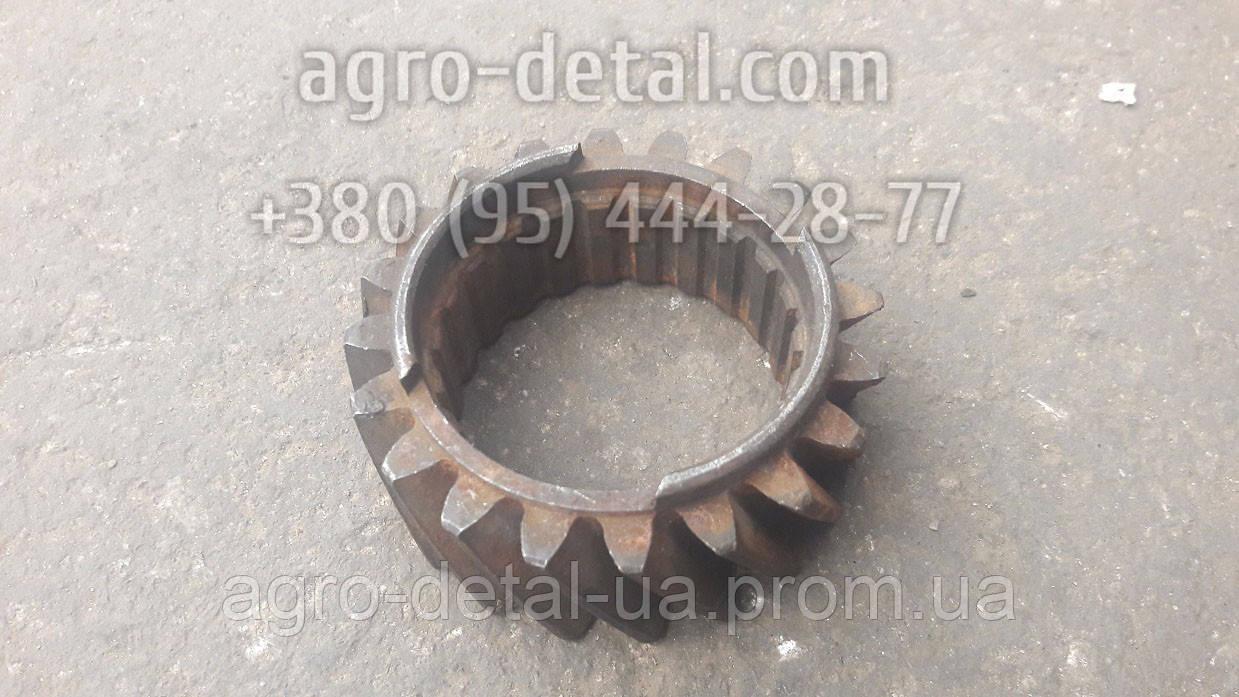 Колесо зубчатое 01-0404 шестерня коленвала двигателя А 41,А 01,А 01М,Д 461,Д 440,Д-442 производства АМЗ