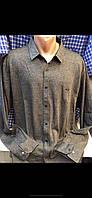 Турецкие мужские рубашки больших размеров Taft (Amato )