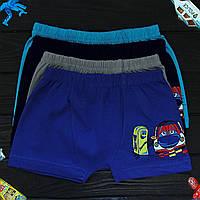 Детские трусы боксеры для мальчика Nicoletta (возраст: 4-5, 5-6, 6-7) 30585 | 5 шт.
