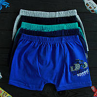 Детские трусы боксеры для мальчика Nicoletta (возраст: 5-6, 6-7) 30612 | 5 шт.