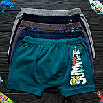 Детские трусы боксеры для мальчика Nicoletta (возраст: 4-5, 5-6, 6-7) 30678 | 5 шт.
