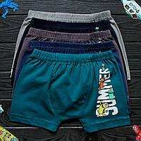 Детские трусы боксеры для мальчика Nicoletta (возраст: 4-5) 30678 | 5 шт.