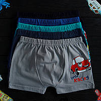 Трусы детские боксеры Nicoletta Турция для мальчика (возраст: 5-6) 30508 | 5 шт.