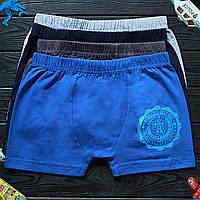 Детские трусы боксеры для мальчика Nicoletta (возраст: 10-11) 30532 | 5 шт.