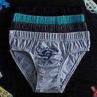 Детские трусы плавки для мальчика Nicoletta (возраст: 12-13) 30535 | 5 шт.
