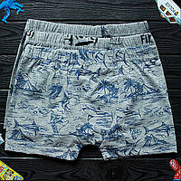 Детские трусы боксеры для мальчика Nicoletta (возраст: 8-9, 12-13) 30593 | 5 шт.