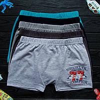 Детские трусы боксеры для мальчика Nicoletta (возраст: 10-11) 30652 | 5 шт.
