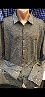 Мужские турецкие рубашки больших размеров Taft (Amato )