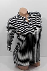 Женские рубашки и платья в полоску длинный рукав 2020