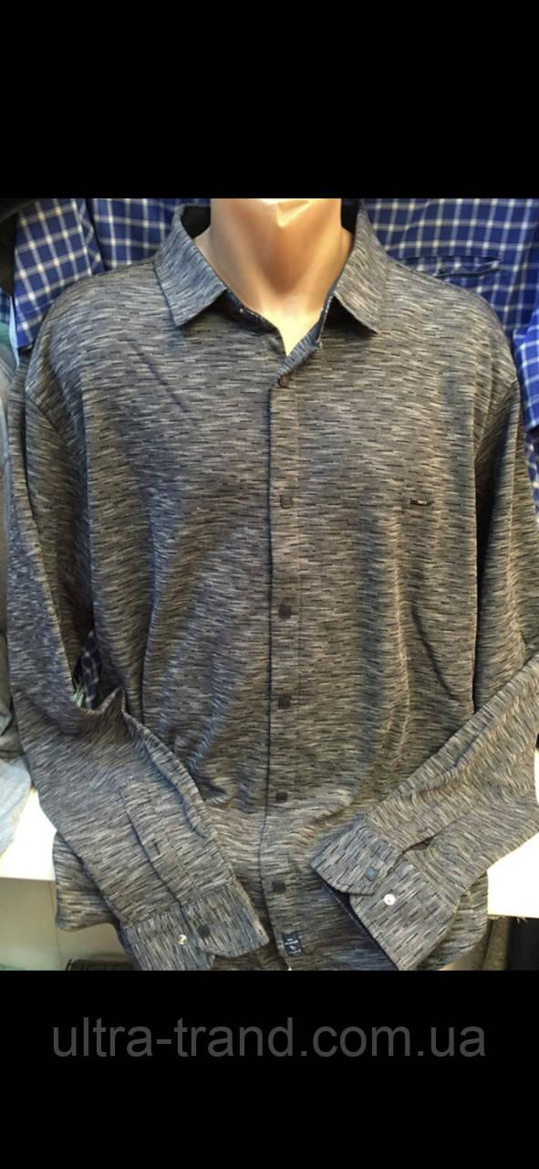 Турецкие мужские рубашки с длинным рукавом больших размеров Тафт Амато
