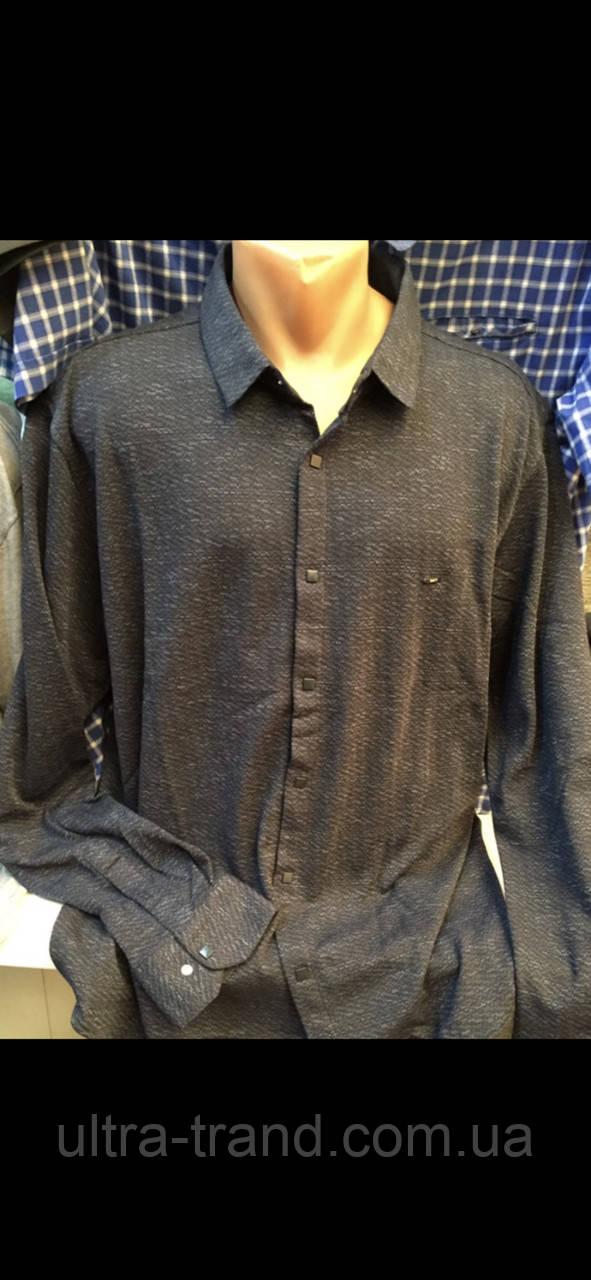 Мужские турецкие трикотажные рубашки больших размеров с длинным рукавом Taft (Amato )