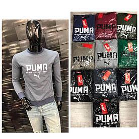 Свитшот мужской Puma. Супер качество, Турция. Размеры  M L XL XXL, расцветки