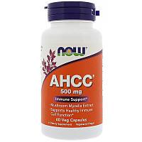 Иммунная поддержка AHCC, Now Foods, 500 мг, 60 капсул, фото 1