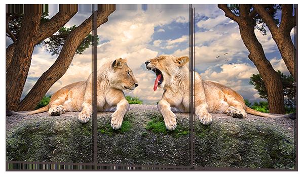 Модульная картина Interno Холст Львята  164x93см (R678XXL)