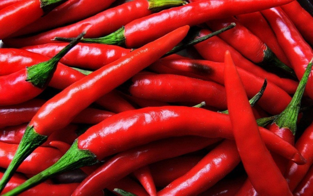 Перец Чили стручковый
