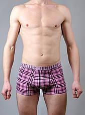 Підліткові трусики , боксери, фото 3