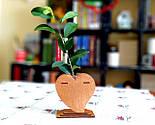 Маленька дерев'яна яна ваза «Любляче серце»: найкращий подарунок для коханої людини, фото 5