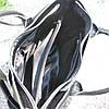Кожаная женская сумка Валенсия черная, фото 4