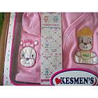 Костюм для новорожденного Kesmens 5 элементов, фото 2