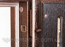 Двери в частный дом в Николаеве, фото 2