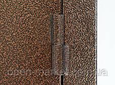 Двери уличные Посад-Покровское Херсонская область, фото 3