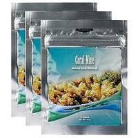Коралловая вода - Коралловый Кальций «Coral-Mine»