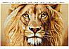 """""""Величественный лев"""""""