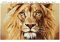 """Схема для полной вышивки бисером """"Величественный лев"""""""