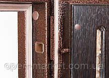 Двери уличные село Центральное Николаевская область, фото 2