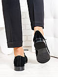Oksford туфлі чорна замша 6649-28, фото 3