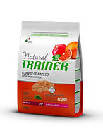 Trainer Natural Puppy & Junior Medium (Трейнер) - сухой корм для щенков средних пород 12 кг