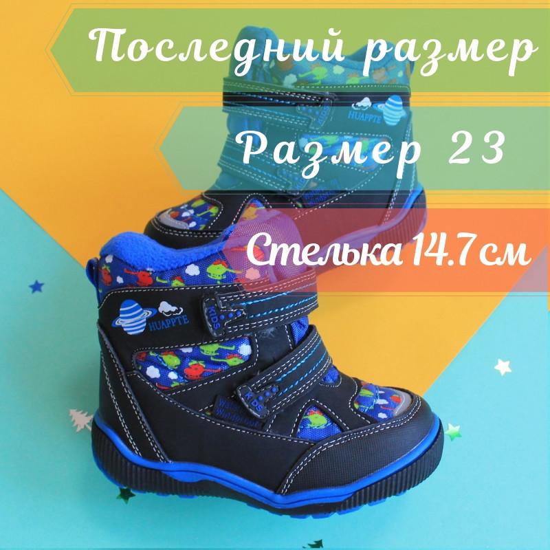 Синие Термо сапожки для мальчика зимние ТМ ТомМ р. 23
