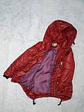 Демисезонная куртка для девочки от производителя, фото 2